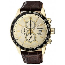 Ore Citizen AN3602-02A