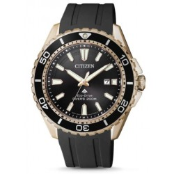 Ore Citizen BN0193-17E